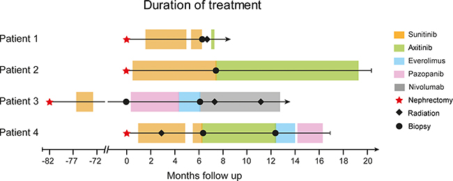 Swimmer plot with therapy sequences and durations of different treatment lines for each patient.