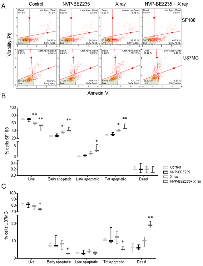 NVP-BEZ235 enhances cytotoxic X ray effects in SF188 and U87MG cell lines.