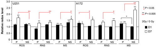 Acute and persistent oxidative stress in irradiated parental and NS subcultures of U251 and A172 cells.
