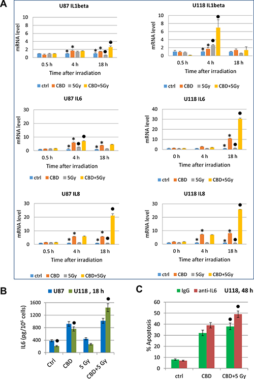 Cytokine gene expression in glioblastoma cells determined by quantitative real-time PCR.