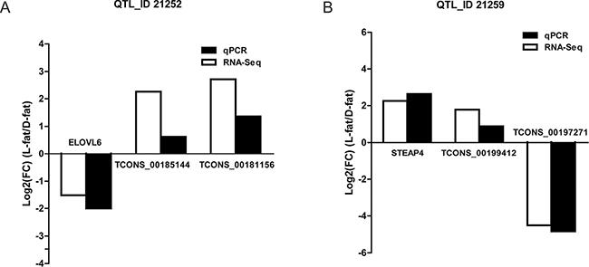 Co-expression of transcripts validation via quantitative real-time PCR.