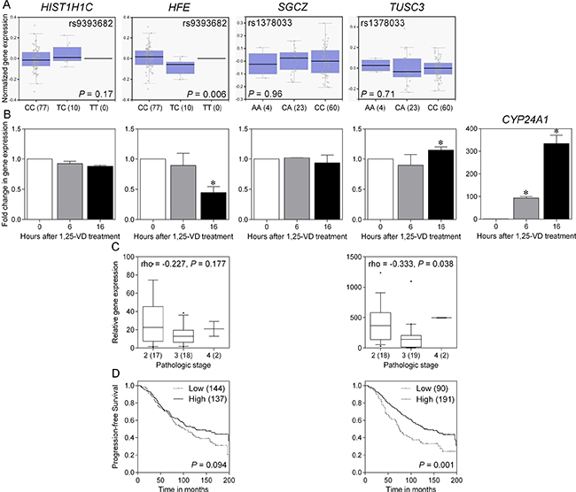 Functional analysis of SNPs and candidate genes associated with prostate cancer progression.