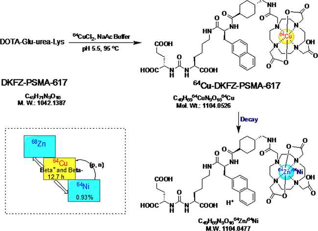 The radio-labeling and decay of 64Cu-PSMA-617.