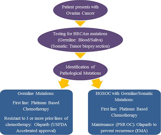 Incorporation of olaparib into the treatment regimen for BRCAm OC: USFDA versus EMA approval.