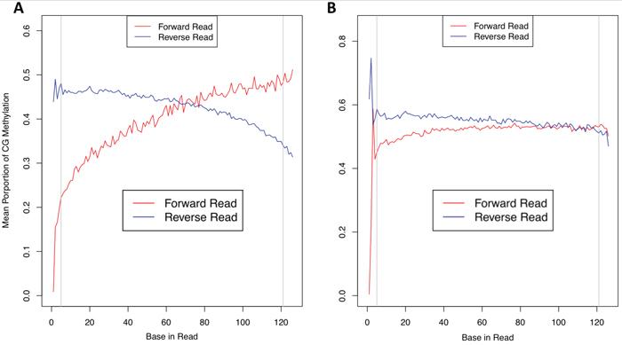 Methylation bias plots.