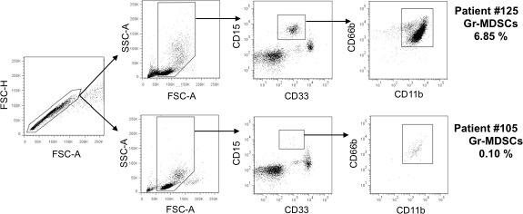 Gating strategy and representative dot plots for granulocytic myeloid-derived suppressor cells (Gr-MDSCs).