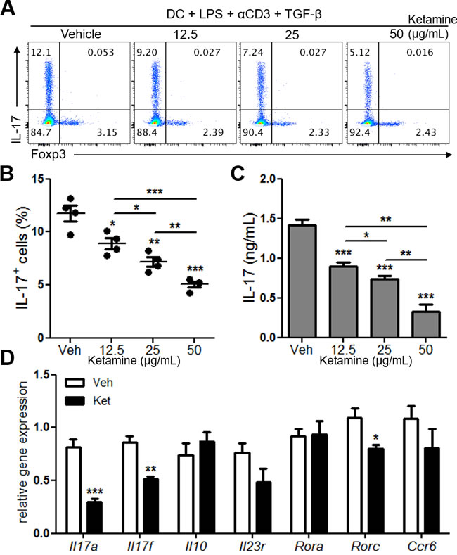 Ketamine inhibits DC-mediated Th17 cell differentiation.