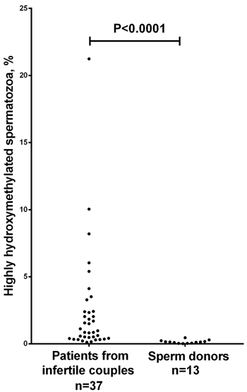 Scatter dot plot showing the percentage of immunocytochemically detected highly hydroxymethylated (5hmC-positive) spermatozoa in ejaculates from sperm donors versus patients from infertile couples.