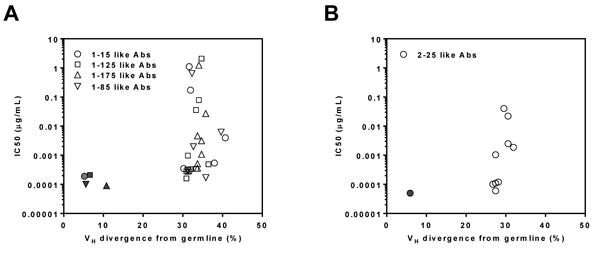 Antiviral function of reconstituted somatic variant antibodies.