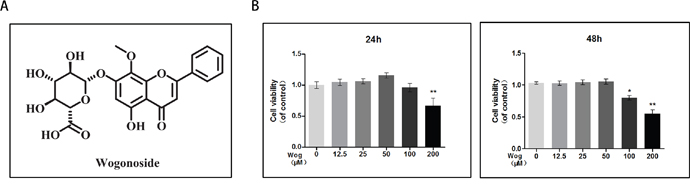 Effects of wogonoside on the cell viability of chondrocytes.