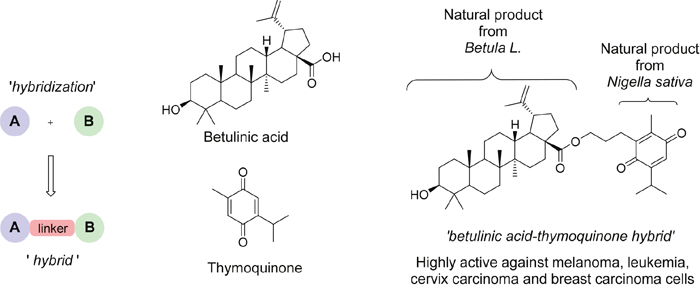 Natural products hybridization.