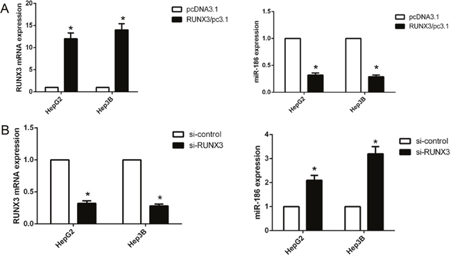 RUNX3 negatively regulated miR-186 expression in hepatocellular carcinoma cells.