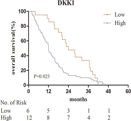 Kaplan–Meier analysis for serum DKK1 in the bone metastases group.