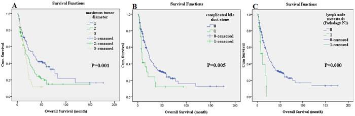 The survival comparison of independent prognostic factors using the log-rank method: maximum tumor diameter.