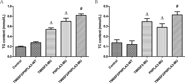 Effects of the TM6SF2 E167K and PNPLA3 I148M variants on triglyceride and total cholesterol contents.