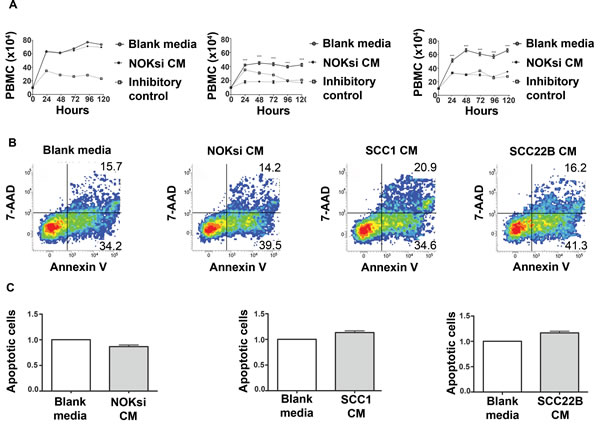 Products secreted from head and neck cancer cells inhibit proliferation of PBMCs.