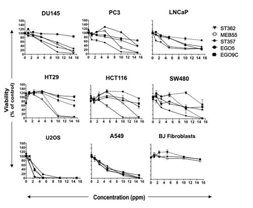 Strigolactone analogues induce cell death in human cancer cell lines.