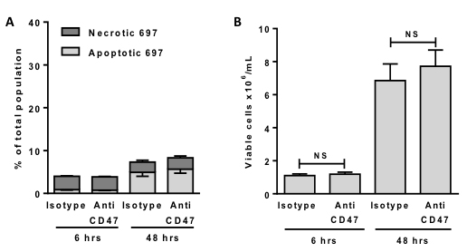 Anti-CD47 antibodies alone do not induce death or affect proliferation of 697 cells.