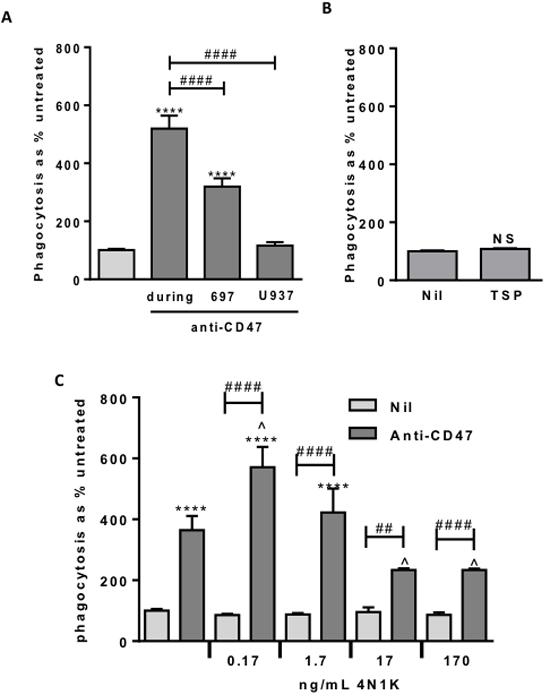 Anti-CD47 is only effective when bound to the target cells.