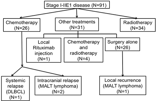 Flow diagram of patients with stage I–IIE1 primary ocular adnexal lymphoma.