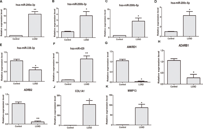 qRT-PCR validation of dysregulated DEMIs/DEMs in stage I LUAD compared with adjacent non-tumor tissues.