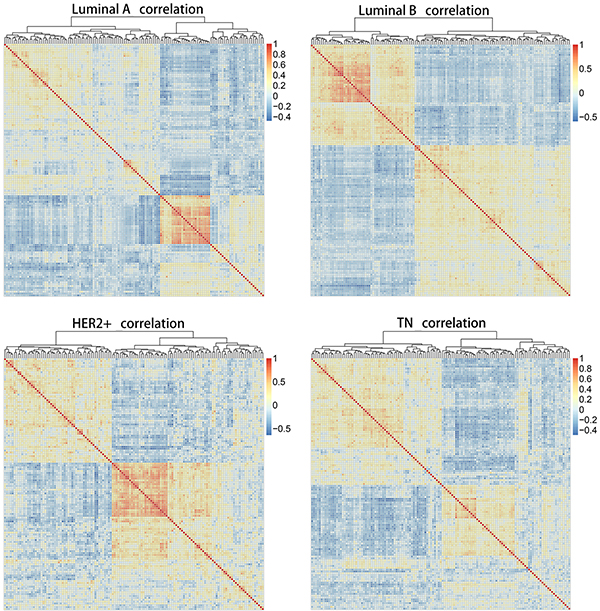 Heat map matrices showing co-expression correlations between 136 overlapping genes for samples of all four subtypes.