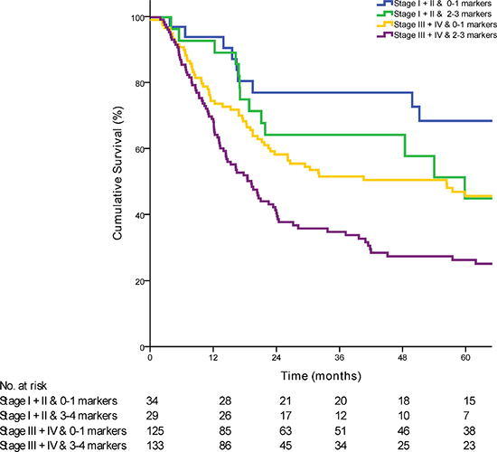 Kaplan-Meier curve comparing survival of patients based on the combination of AJCC stage with the prognostic marker panel (p < 0·01).