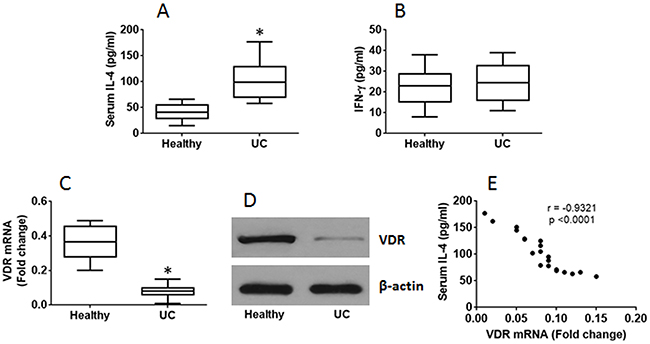 Serum IL-4 is negatively correlated with expression of VDR in CD4+ T cells.