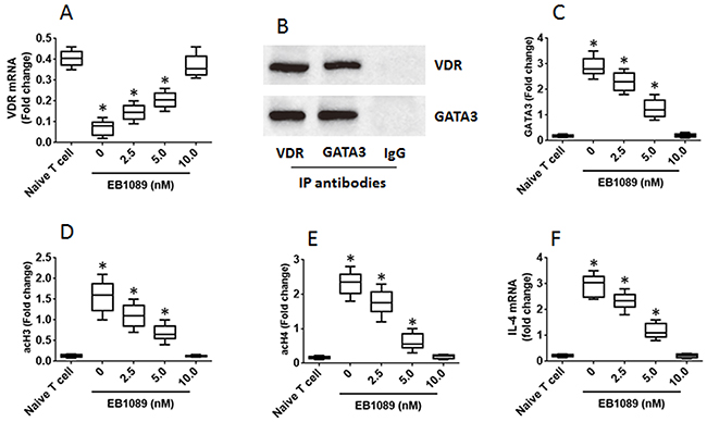 VDR agonists down regulate IL-4 gene transcription in Th2 cells.