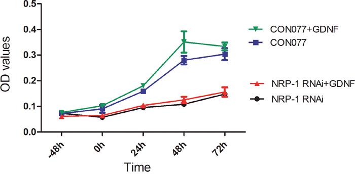 NRP1 RNAi reduces proliferation of GDNF-treated C6 rat glioma cells.