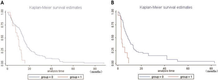 Kaplan-Meier survival analysis of GBM patients with high and low NRP1 mRNA levels.