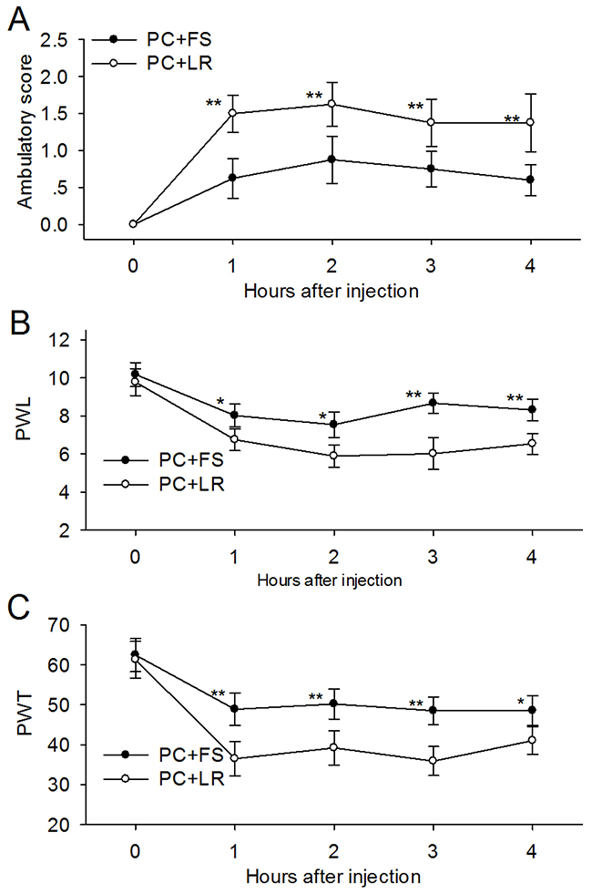 PAR-2 antagonist reversed the ambulatory pain, thermal and mechanical hyperalgesia induced by PC supernatant.