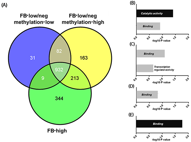 Figure 5:Venn-diagram representing the number of genes methylated in Fusobacterium high (FB-high), Fusobacterium low and negative (FB-low/neg) with methylation low and Fusobacterium low and negative (FB-low/neg) with methylation high samples (A).