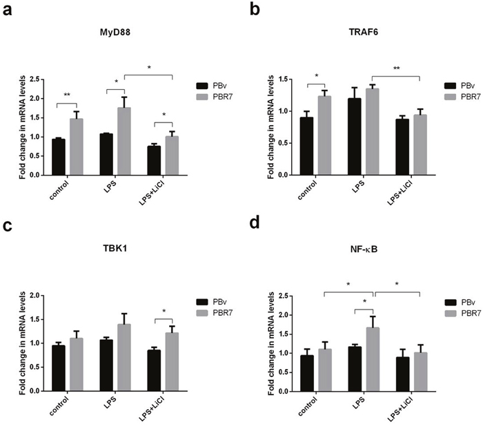 Effect of swine IRF7 on the expression of components of the TLR4 signaling pathway.