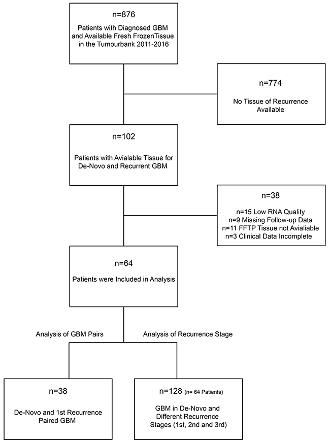 Workflow for study screening and patients recruitment.