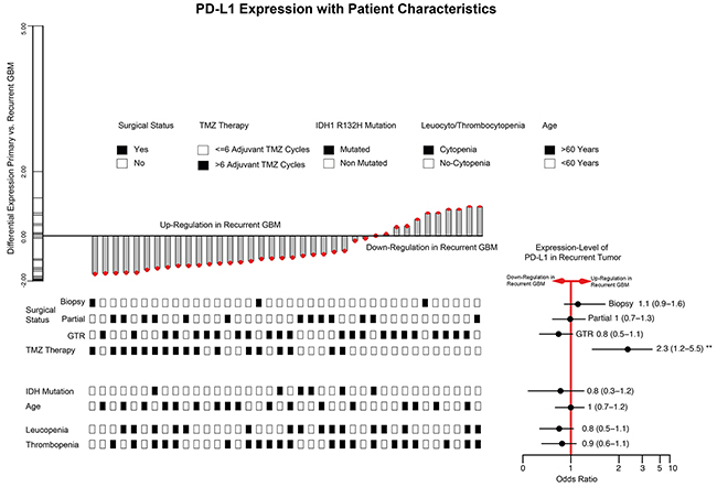 Barplot of PD-L1 expression differences between de-novo and 1st recurrence (38 paired GBM patients).