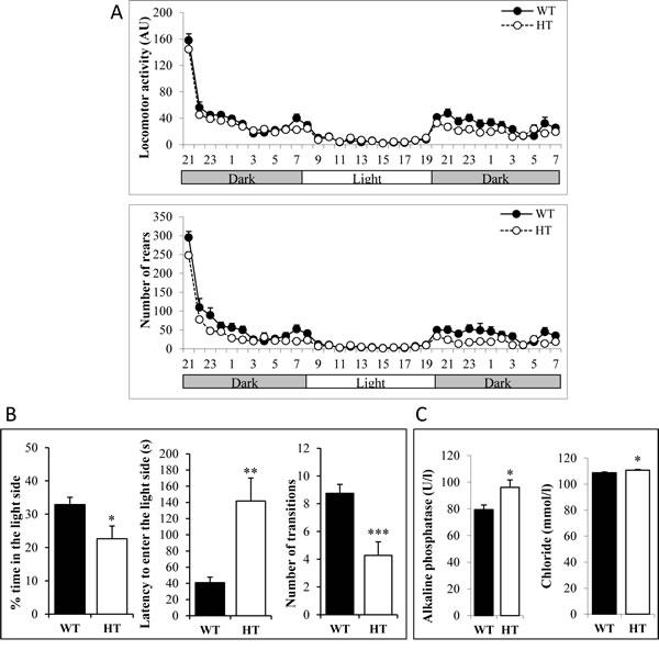 Behavioral abnormalities of heterozygous adult KI Alk