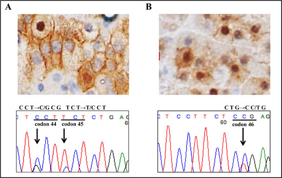 Mutation analysis of