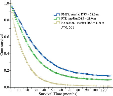 Disease specific survival curves of different groups.