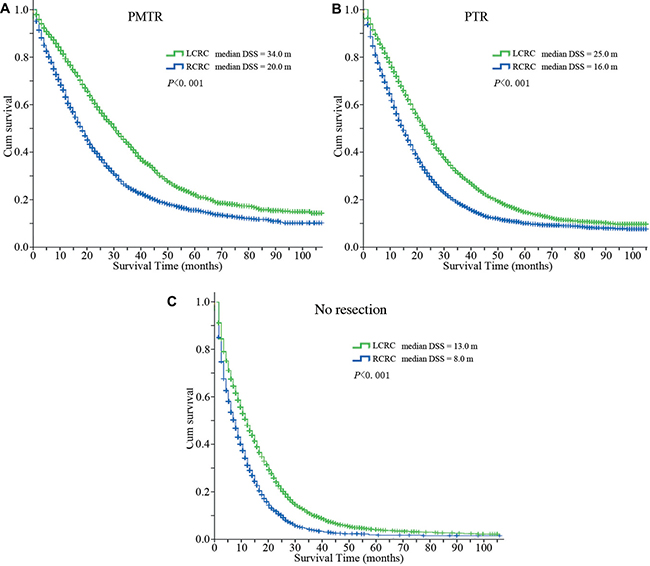 Disease specific survival curves of patients with different primary tumor locations.