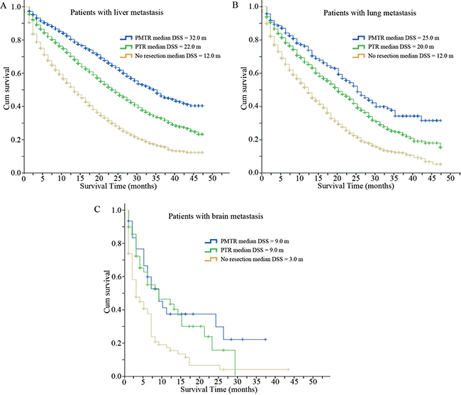 Disease specific survival curves of patients with different sites of metastasis.