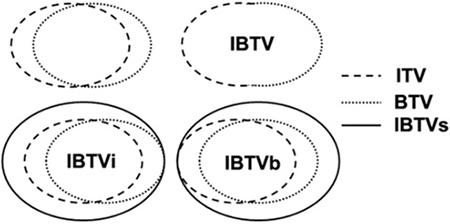 Schematic diagram to construct IBTVs by three metrics.
