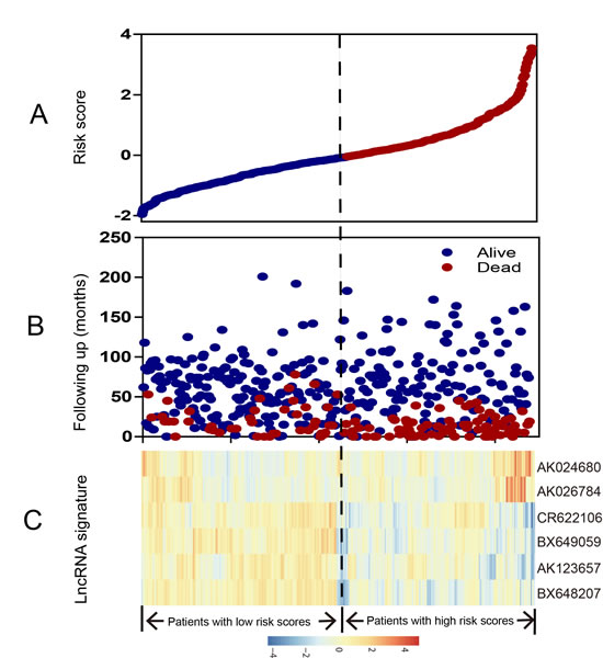 LncRNA risk score analysis of entire GSE39582 series.