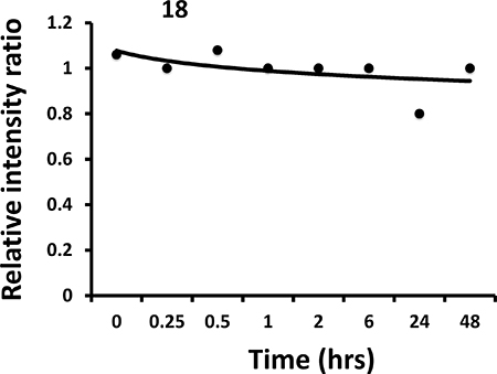 Stability of compound 18 in mouse serum (in vitro).