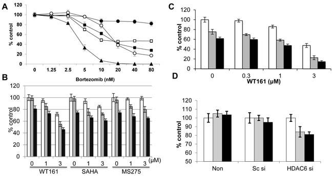 WT161 enhances bortezomib-induced cytotoxicity.