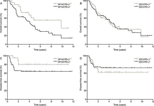 Survival outcome of PD-L1 expression.