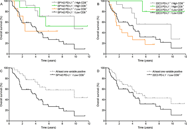 Overall survival outcome combining PD-L1 expression on tumor cells with CD8+ T cell count.