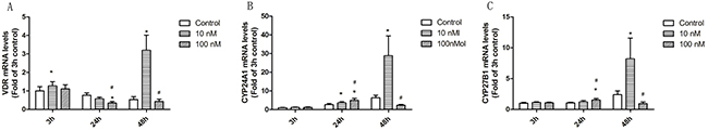 The effect of 1α,25(OH)2D3 on mRNA expression in T cells from SLE patients.