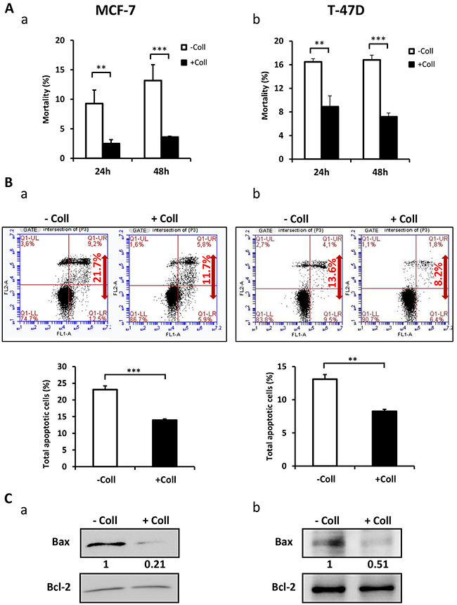 Collagen 1 induced MCF-7 and T-47D cells survival under serum starvation.