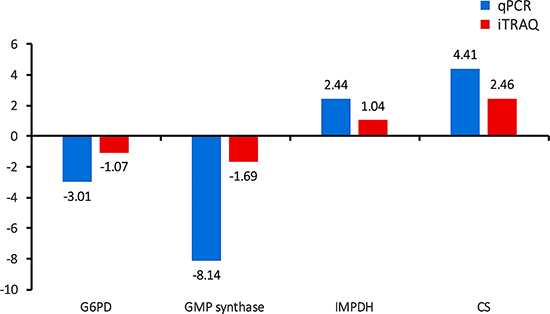 Validation of the relative abundance of the top four hub DEPs by qPCR.